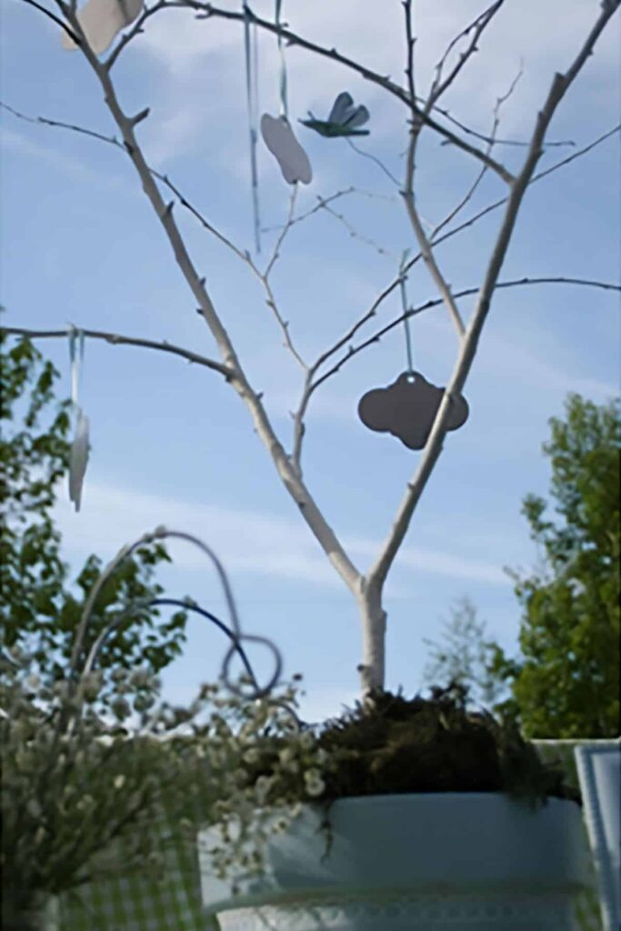 a potted tree sapling with metal tags hanging from the bare branches