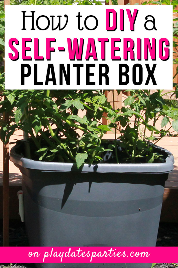 DIY Self Watering Planter for Gorgeous Plants All Summer Long