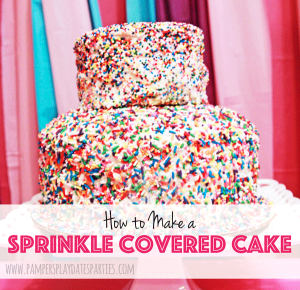 {DIY} How to Make a Sprinkle Covered Cake