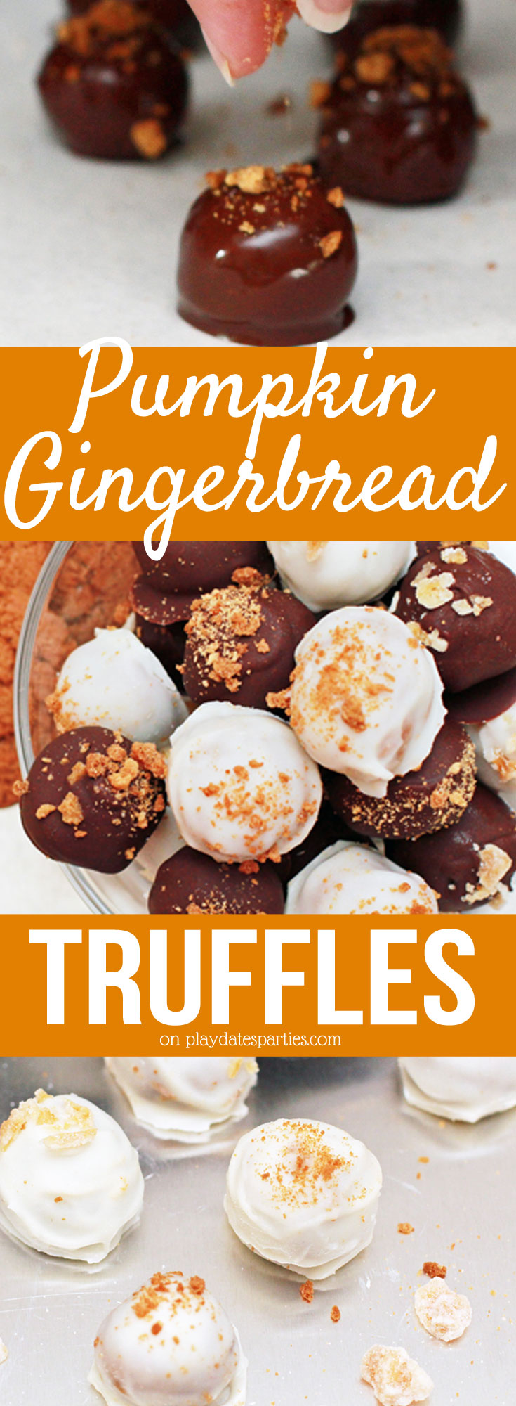 You won't be able to stop eating these #pumpkin gingerbread truffles! With two #recipes to choose from - #chocolate pumpkin gingerbread truffles and pumpkin cream cheese truffles- you'll be hooked. Yum!