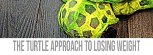 Turtle-Approach-Weight-Loss