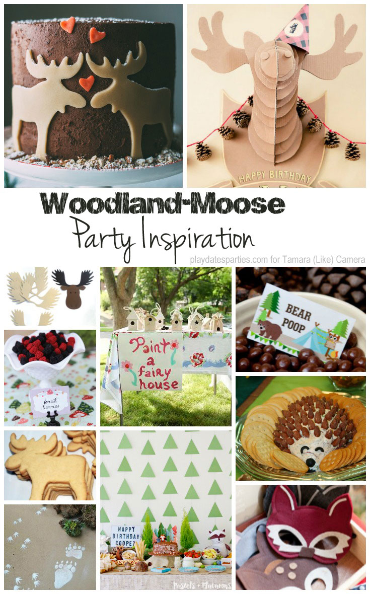 Woodland-Moose-Party-Inspiration