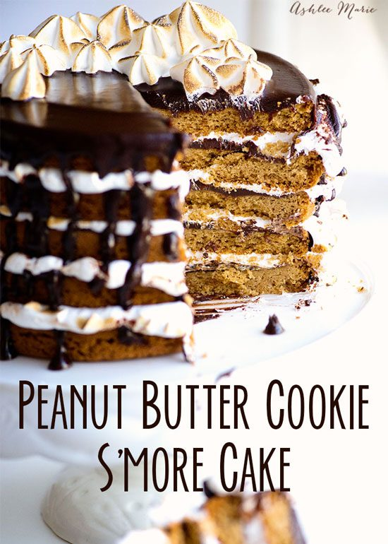 Peanut Butter Cookie S'mores Cake by Ashlee Marie