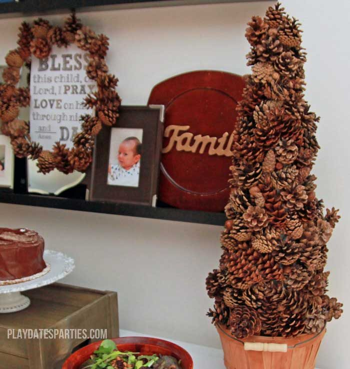Find out how to preserve pine cones and acorns that you find in your back yard so your fall decor stays bug and mold free for months.