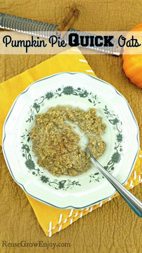 Pumpkin Pie Quick Oatsby Reuse Grow Enjoy