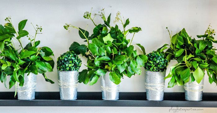 Small vases on a picture ledge filled with fresh greenery for Thanksgiving decorations