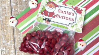Santa's Buttons Treat Bags