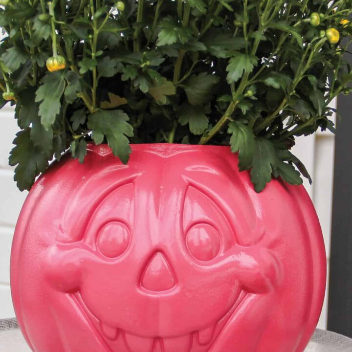 Pink painted plastic jack o lantern with a happy face and yellow chrysanthemum blooming out the top