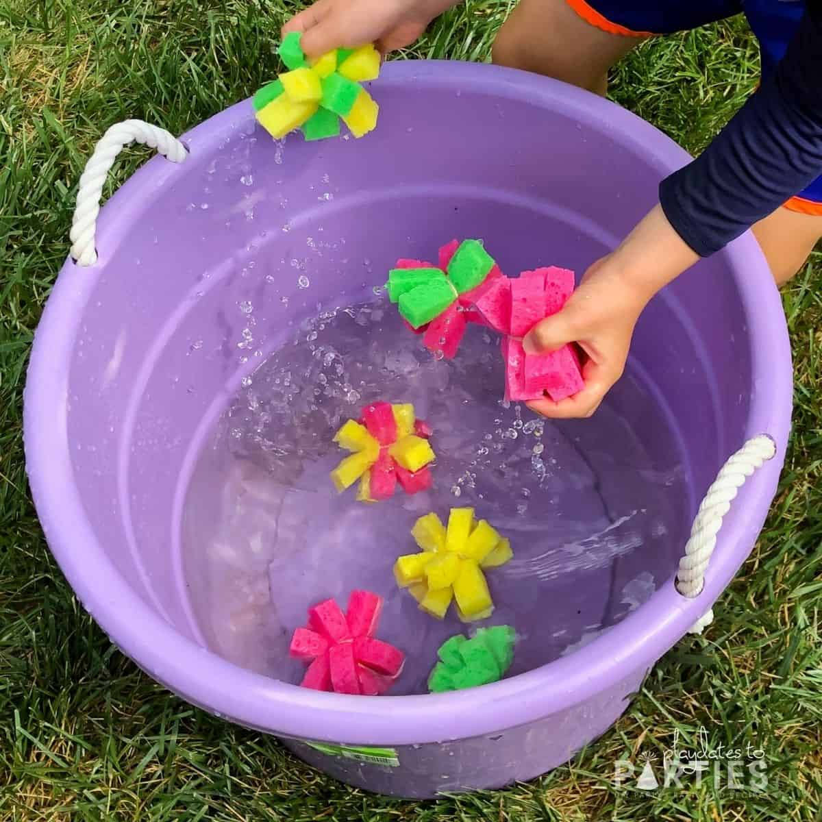 toddler boy grabbing sponge balls out of a large bucket filled with water