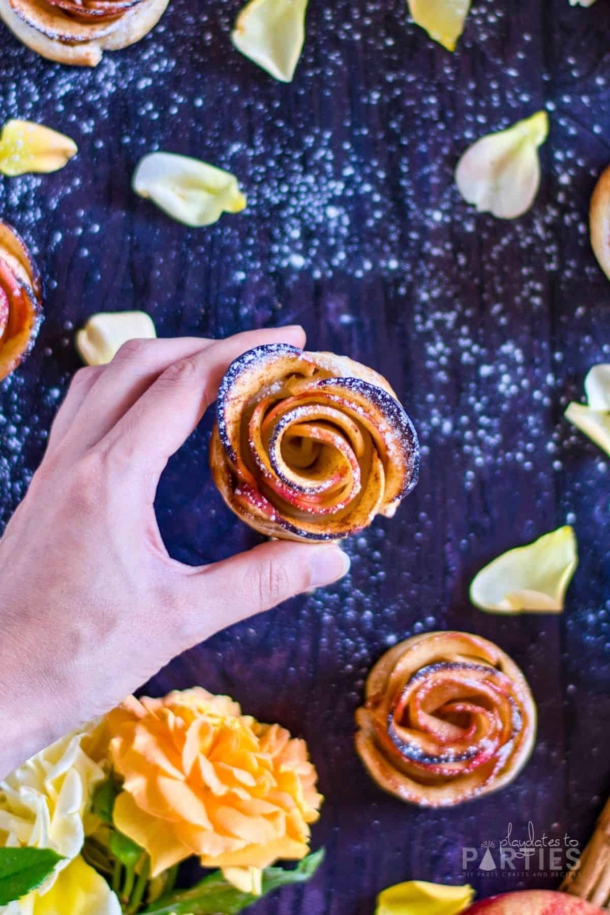 overhead view of a woman's hand holding a rose shaped mini apple tart
